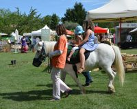 2014.06 Stand ISOFACULTE Fete Vaucluse Durable (40).JPG