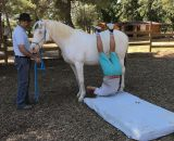 ISOFACULTE equihomologie equilibres a cheval z1