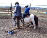 ISOFACULTE equihomologie equilibres a cheval z3